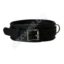 Padded Strict Leather Collar