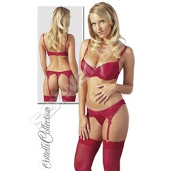 Silky bra and garter thong set